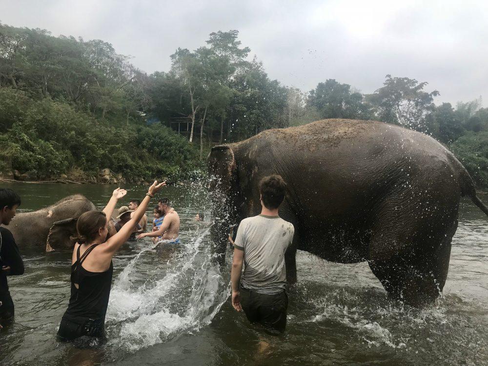 Bath at Elephant Haven Kanchanaburi