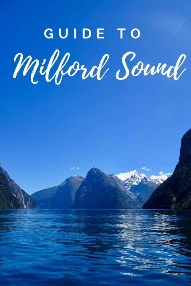 Milford Sound Guide